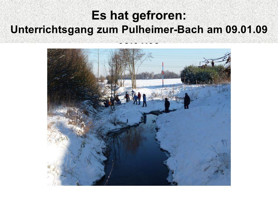 Es hat gefroren: Unterrichtsgang zum Pulheimer-Bach am 09.01.09
