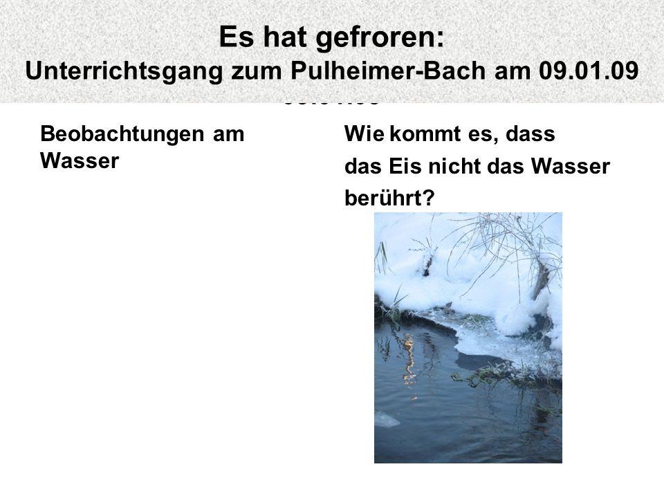 Beobachtungen am Wasser Wie kommt es, dass das Eis nicht das Wasser berührt? Es hat gefroren: Unterrichtsgang zum Pulheimer-Bach am 09.01.09