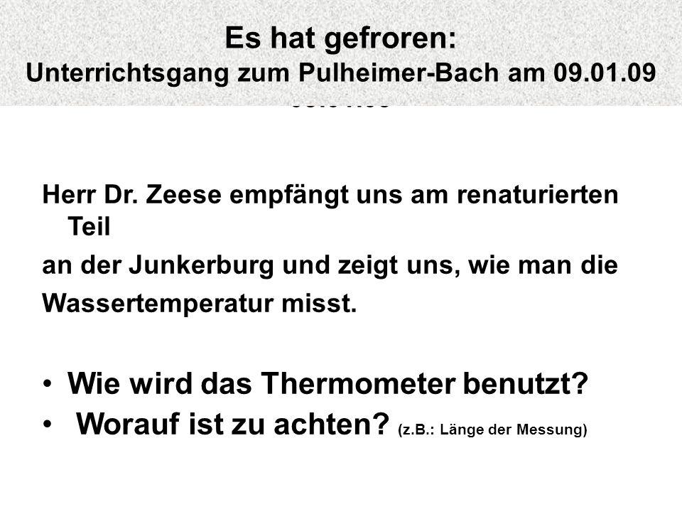 Herr Dr. Zeese empfängt uns am renaturierten Teil an der Junkerburg und zeigt uns, wie man die Wassertemperatur misst. Wie wird das Thermometer benutz