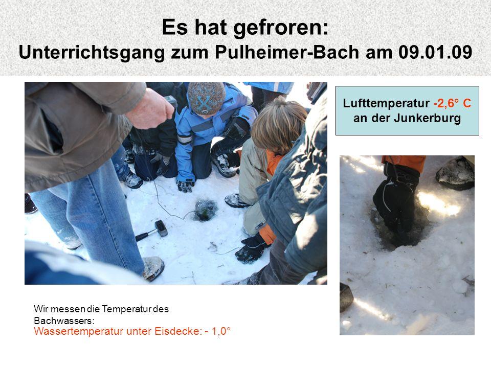 Es hat gefroren: Unterrichtsgang zum Pulheimer-Bach am 09.01.09 Wir messen die Temperatur des Bachwassers: Wassertemperatur unter Eisdecke: - 1,0° Luf