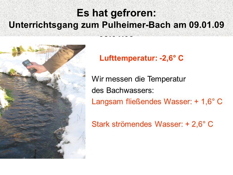 Wir messen die Temperatur des Bachwassers: Langsam fließendes Wasser: + 1,6° C Stark strömendes Wasser: + 2,6° C Lufttemperatur: -2,6° C Es hat gefror