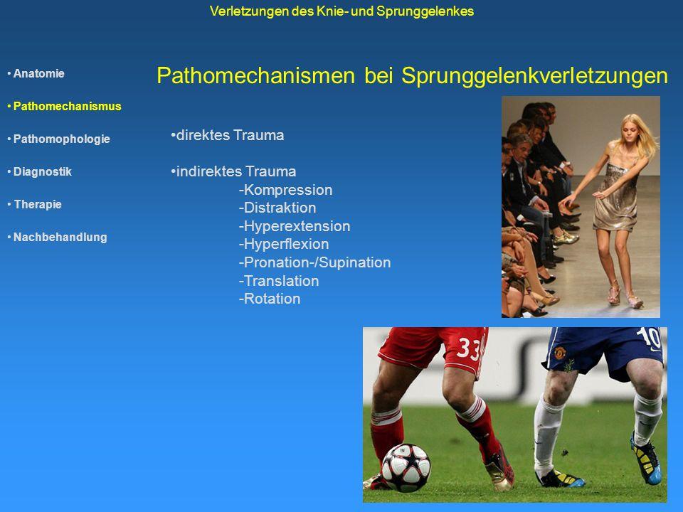 Anatomie Pathomechanismus Pathomophologie Diagnostik Therapie Nachbehandlung Verletzungen des Knie- und Sprunggelenkes Pathomechanismen bei Sprunggele