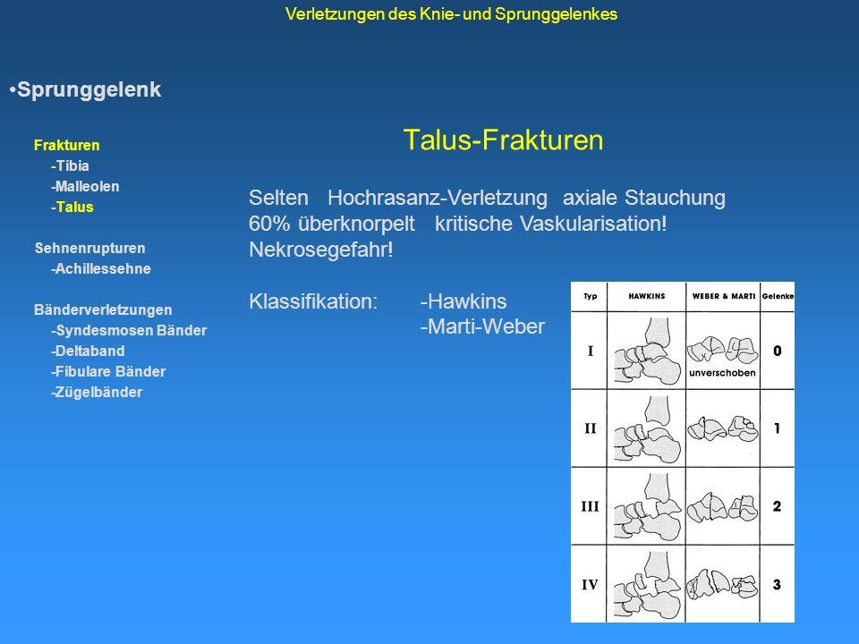 Talus-Frakturen Sprunggelenk Frakturen -Tibia -Malleolen -Talus Sehnenrupturen -Achillessehne Bänderverletzungen -Syndesmosen Bänder -Deltaband -Fibul