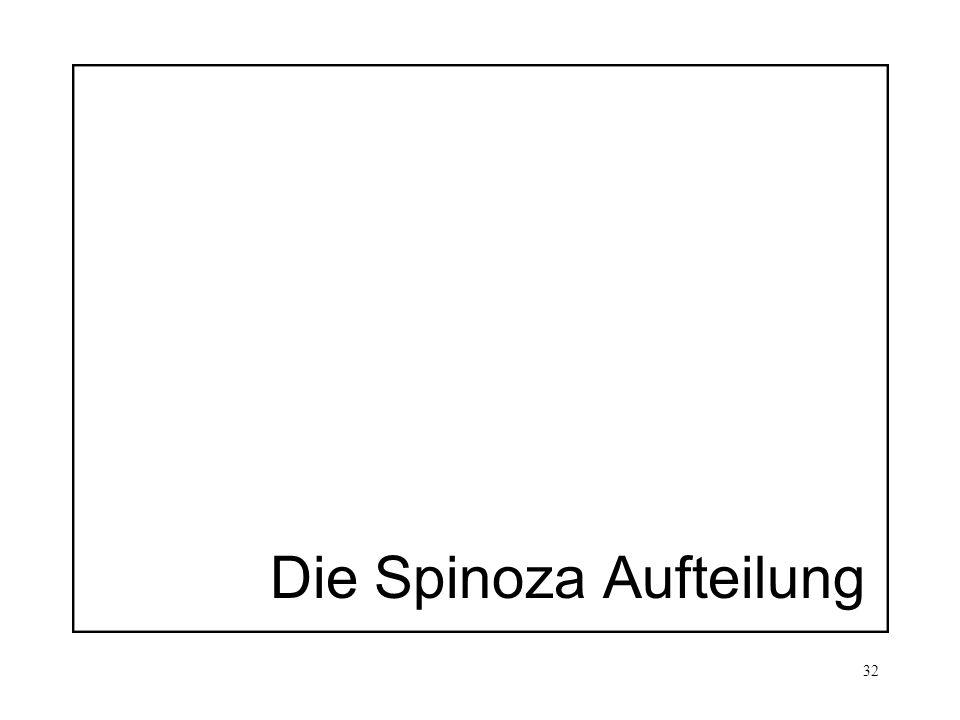 32 Die Spinoza Aufteilung