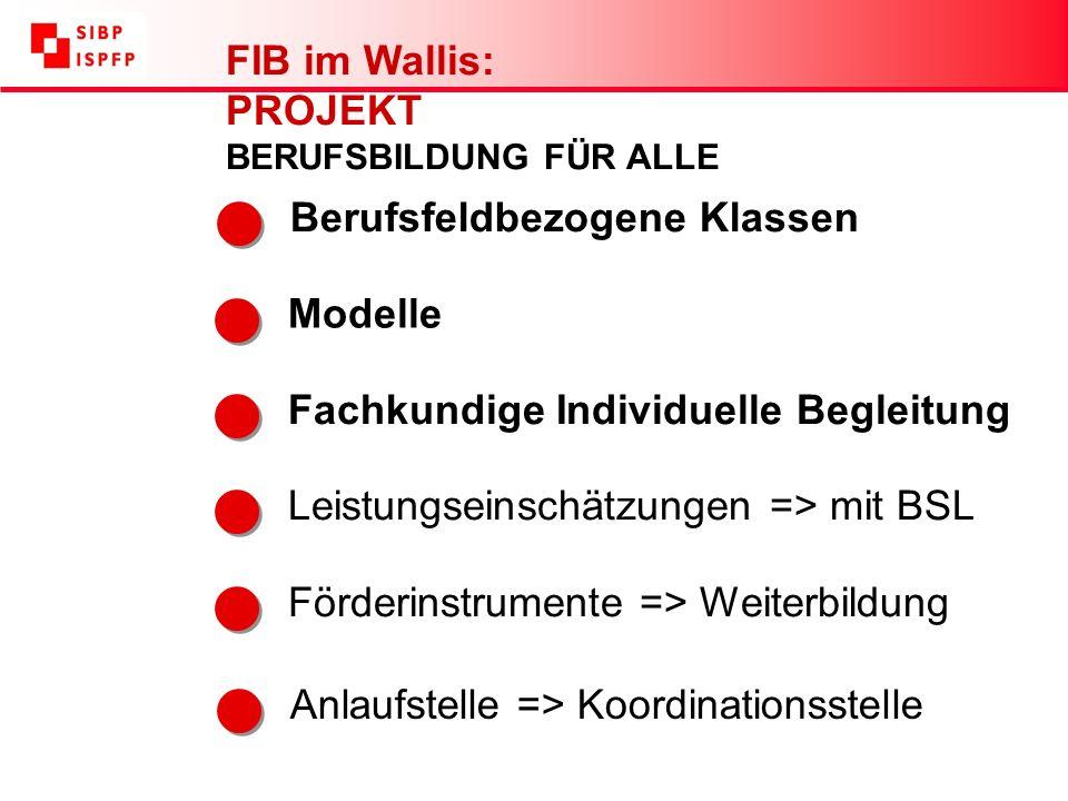 Förderinstrumente => Weiterbildung Modelle Anlaufstelle => Koordinationsstelle Fachkundige Individuelle Begleitung FIB im Wallis: PROJEKT BERUFSBILDUNG FÜR ALLE Berufsfeldbezogene Klassen Leistungseinschätzungen => mit BSL