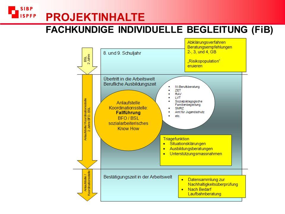 PROJEKTINHALTE FACHKUNDIGE INDIVIDUELLE BEGLEITUNG (FiB)