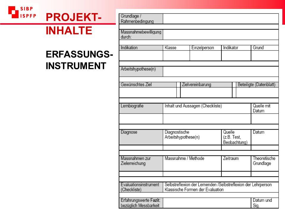 PROJEKT- INHALTE ERFASSUNGS- INSTRUMENT