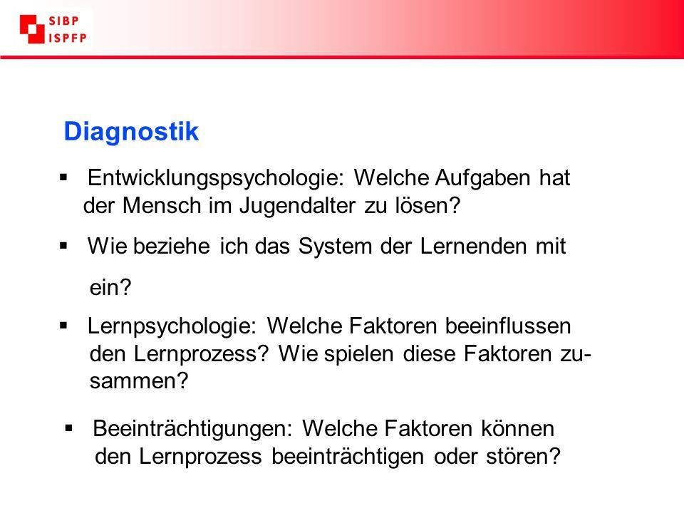 Diagnostik Entwicklungspsychologie: Welche Aufgaben hat der Mensch im Jugendalter zu lösen.