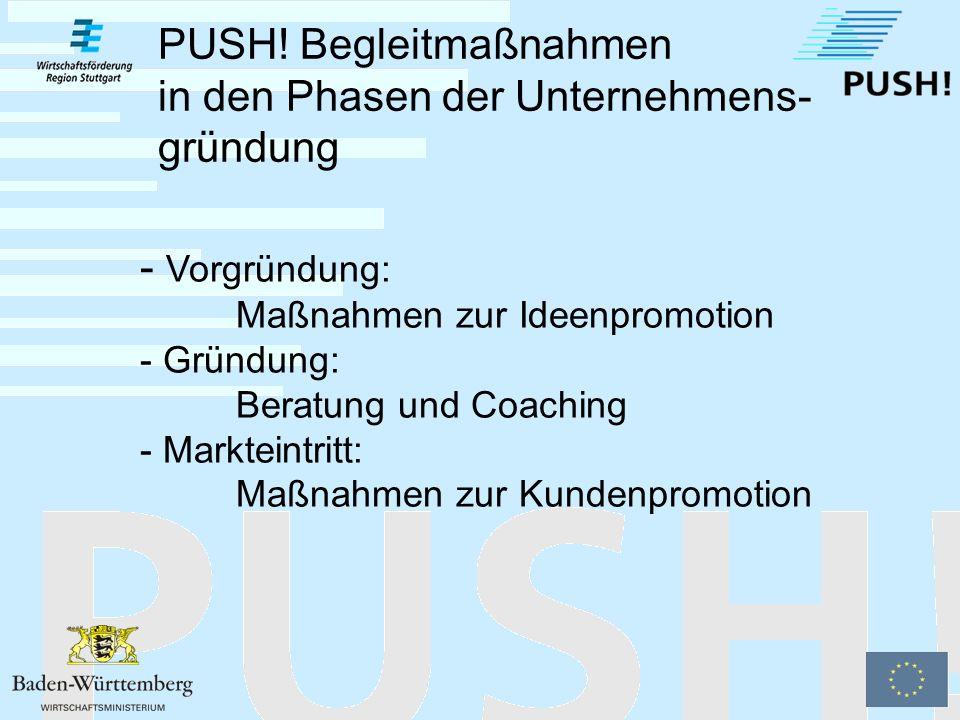 Erstgespräch Bedarfsanalyse Vermittlung (Lotsendienst) Information Betreuung Die Leistungen der PUSH.