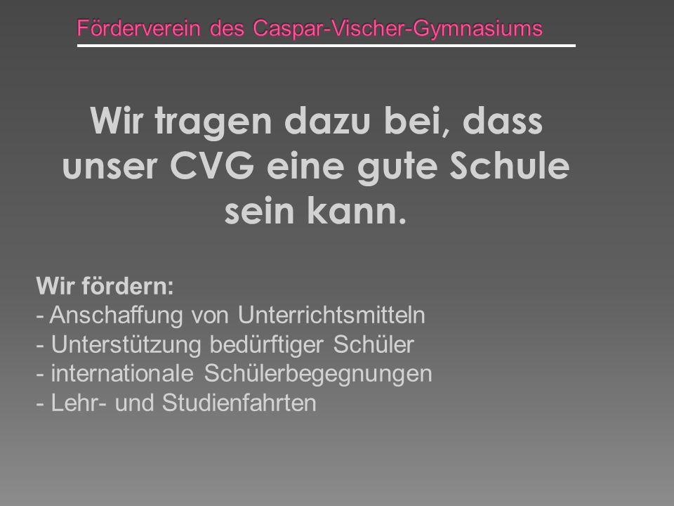 Wir tragen dazu bei, dass unser CVG eine gute Schule sein kann.