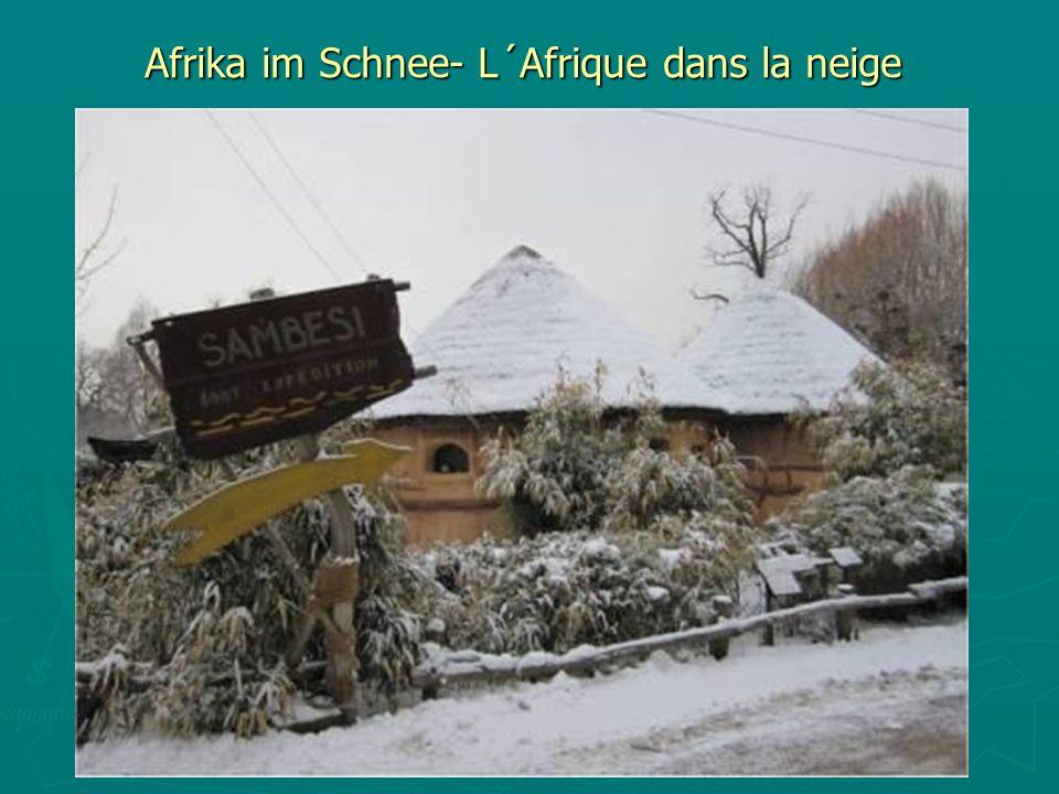 Afrika im Schnee- L´Afrique dans la neige