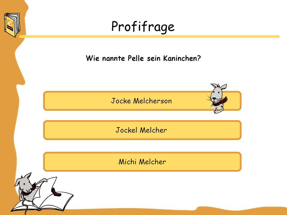 Jocke Melcherson Jockel Melcher Michi Melcher Profifrage Wie nannte Pelle sein Kaninchen?