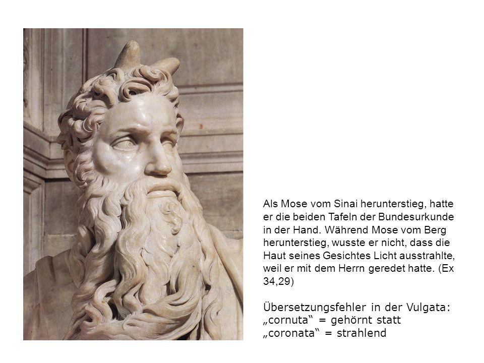 Der Moses des Michelangelo ist sitzend dargestellt, den Rumpf nach vorne gerichtet, den Kopf mit dem mächtigen Bart und den Blick nach links gewendet, den rechten Fuß auf dem Boden ruhend, den linken aufgestellt, so daß er nur mit den Zehen den Boden berührt, den rechten Arm mit den Tafeln und einem Teil des Bartes in Beziehung; der linke Arm ist in den Schoß gelegt.