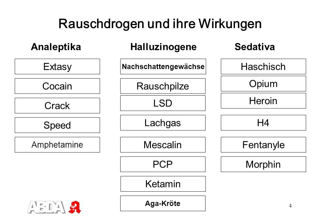 4 Rauschdrogen und ihre Wirkungen Analeptika Halluzinogene Sedativa Speed Extasy Crack Cocain Amphetamine LSD PCP Aga-Kröte Mescalin Rauschpilze Lachg