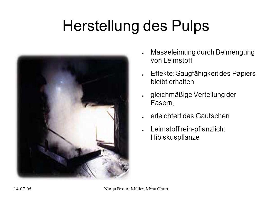 14.07.06Nanja Braun-Müller, Mina Chun Herstellung des Pulps Masseleimung durch Beimengung von Leimstoff Effekte: Saugfähigkeit des Papiers bleibt erha