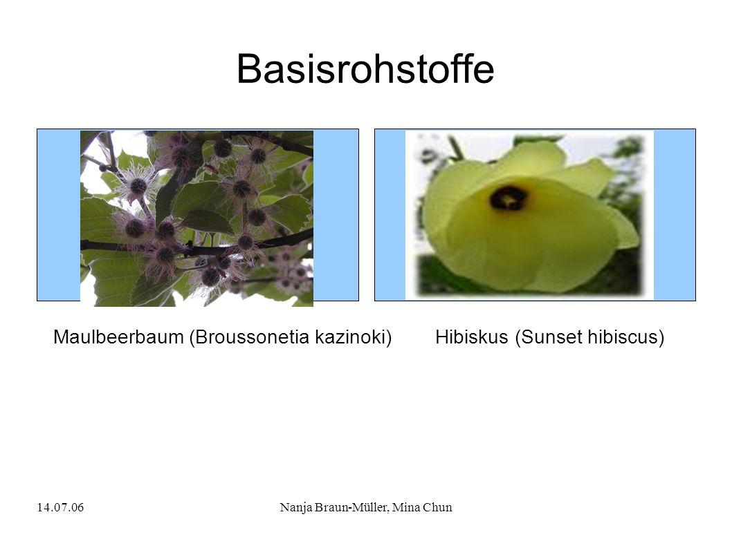 14.07.06Nanja Braun-Müller, Mina Chun Basisrohstoffe Maulbeerbaum (Broussonetia kazinoki)Hibiskus (Sunset hibiscus)