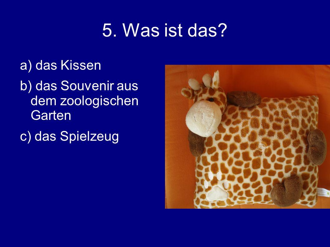 5. Was ist das a) das Kissen b) das Souvenir aus dem zoologischen Garten c) das Spielzeug