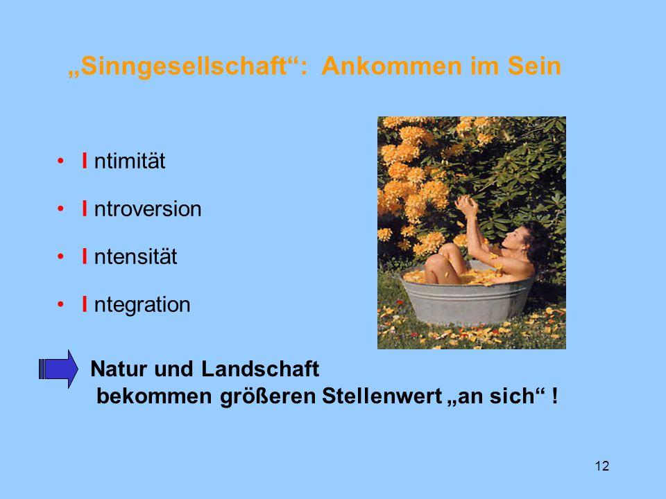 12 I ntimität I ntroversion I ntensität I ntegration Sinngesellschaft: Ankommen im Sein Natur und Landschaft bekommen größeren Stellenwert an sich !