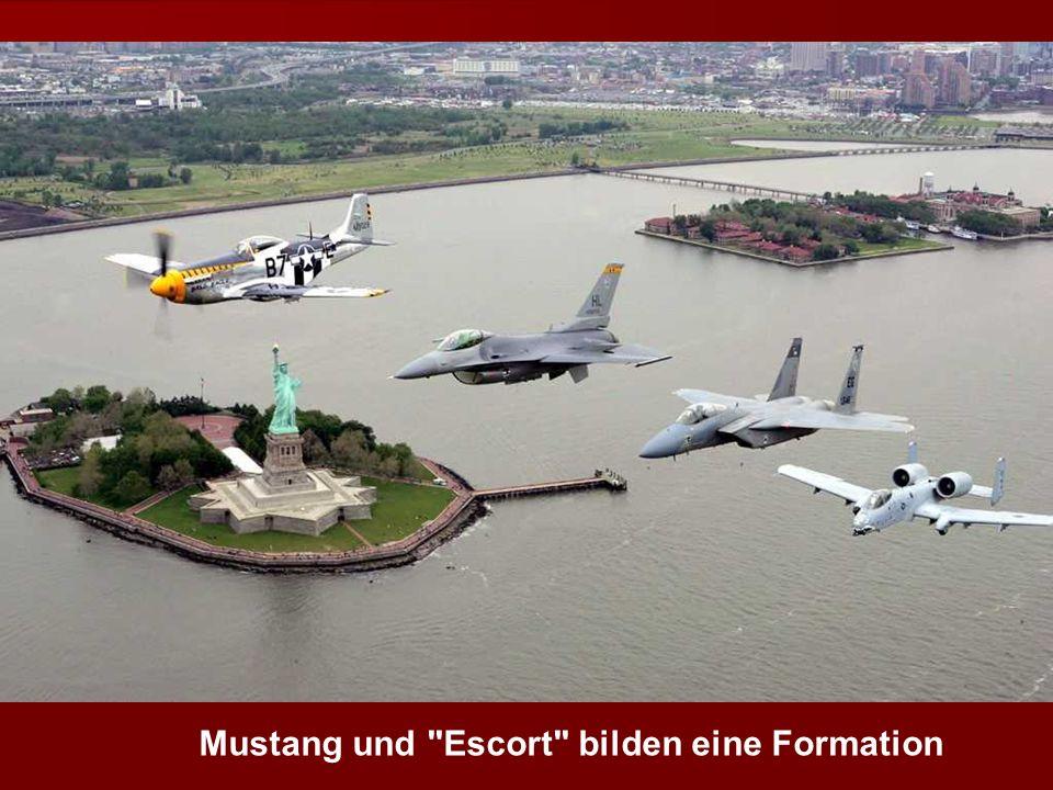 Mustang und Escort bilden eine Formation