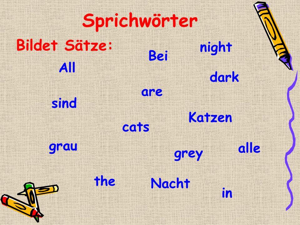 Sprichwörter grau cats All the Katzen dark Bei in grey alle sind are Nacht Bildet Sätze: night