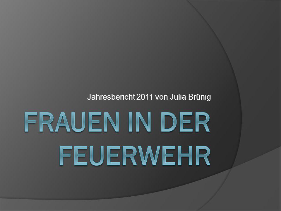 Jahresbericht 2011 von Julia Brünig