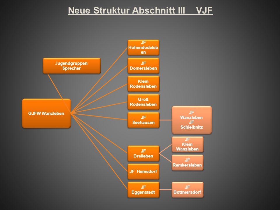 Neue Struktur Abschnitt III VJF GJFW Wanzleben Jugendgruppen Sprecher JF Hohendodeleb en JF Domersleben Klein Rodensleben Groß Rodensleben JF Seehause