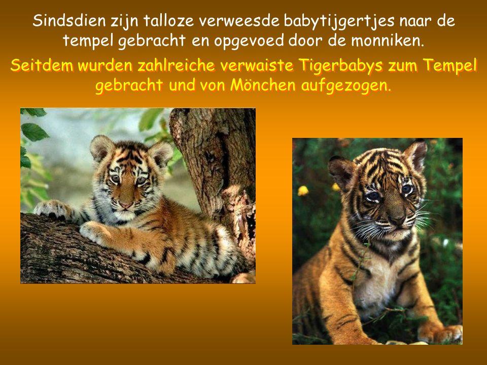 Het is een plek die algemeen wordt beschouwd als beschermd gebied voor deze dieren en een centrum voor natuurbehoud.