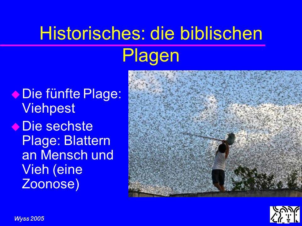 Wyss 2005 Historisches: die biblischen Plagen u Die fünfte Plage: Viehpest u Die sechste Plage: Blattern an Mensch und Vieh (eine Zoonose)