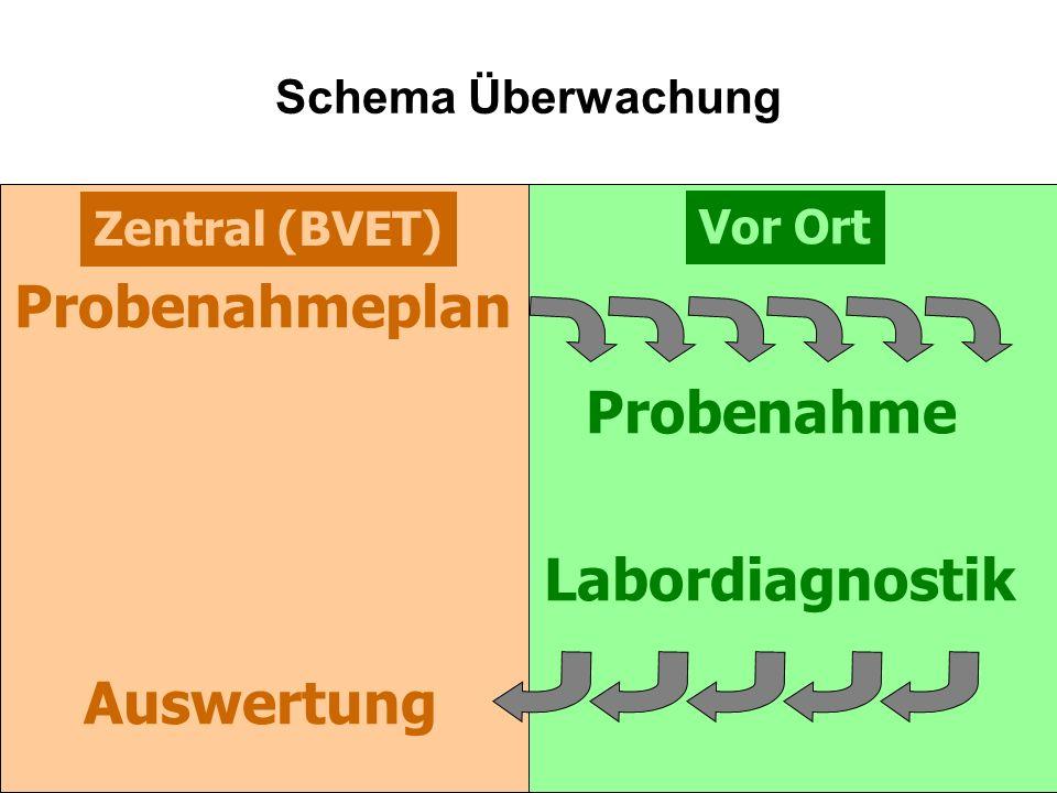 Zentral (BVET) Vor Ort Schema Überwachung Probenahmeplan Labordiagnostik Probenahme Auswertung