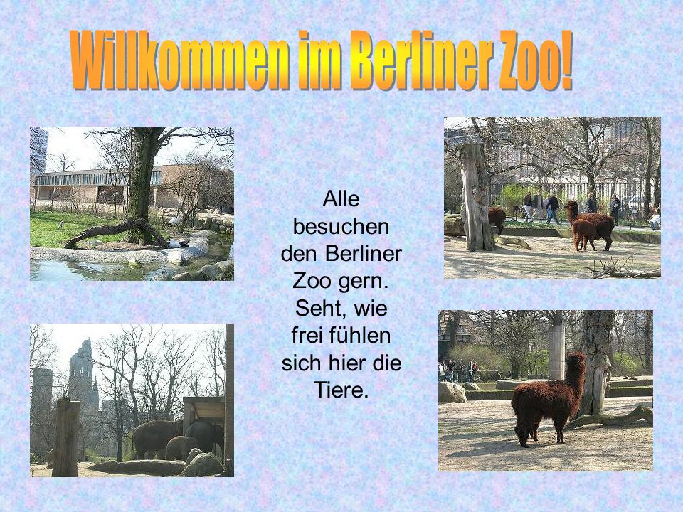 Das grüne Berlin Das grüne Berlin Gleich hinter dem Brandenburger Tor beginnt der Tiergarten, der größte Park Berlins. Er ist viermal größer als der Z