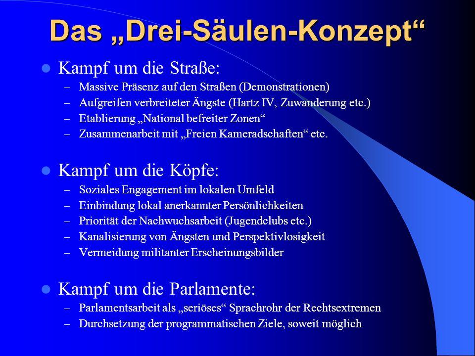 Das Drei-Säulen-Konzept Kampf um die Straße: – Massive Präsenz auf den Straßen (Demonstrationen) – Aufgreifen verbreiteter Ängste (Hartz IV, Zuwanderu