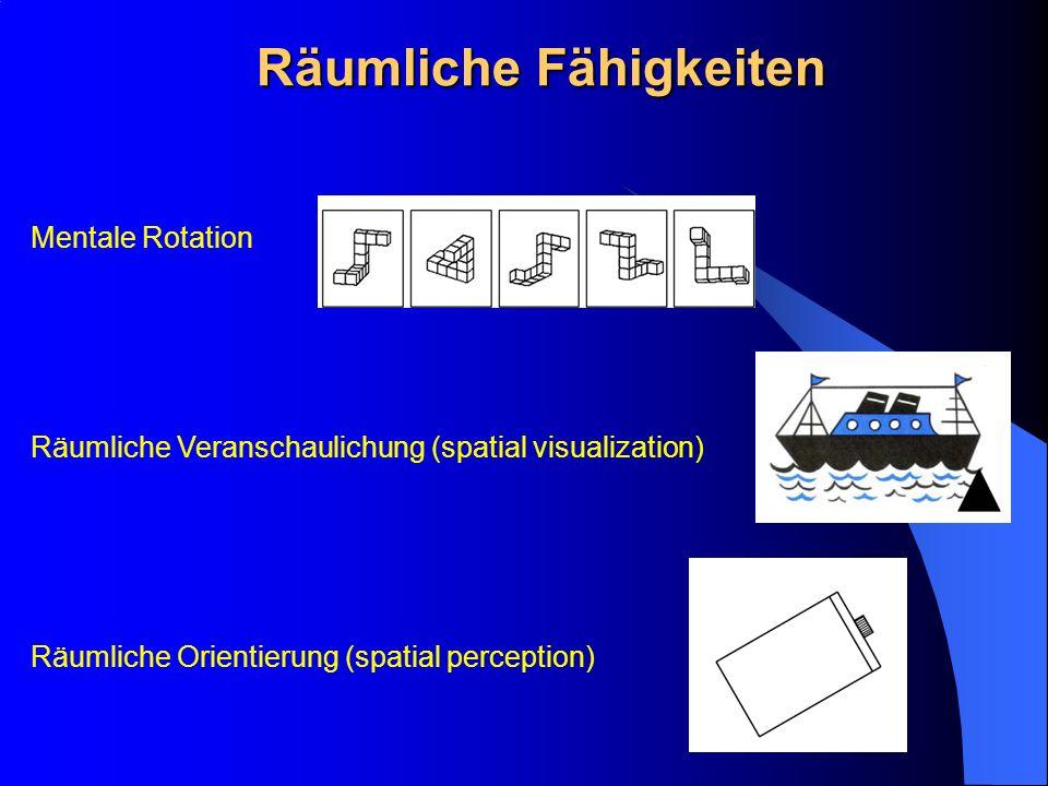 Räumliche Fähigkeiten Mentale Rotation Räumliche Veranschaulichung (spatial visualization) Räumliche Orientierung (spatial perception)