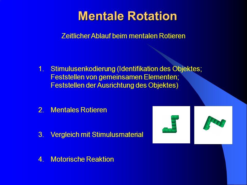 Mentale Rotation Zeitlicher Ablauf beim mentalen Rotieren 1.Stimulusenkodierung (Identifikation des Objektes; Feststellen von gemeinsamen Elementen; F