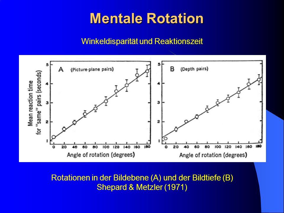 Mentale Rotation Winkeldisparität und Reaktionszeit Rotationen in der Bildebene (A) und der Bildtiefe (B) Shepard & Metzler (1971)