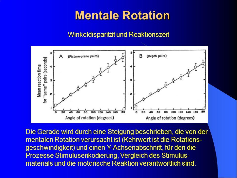 Mentale Rotation Winkeldisparität und Reaktionszeit Die Gerade wird durch eine Steigung beschrieben, die von der mentalen Rotation verursacht ist (Keh