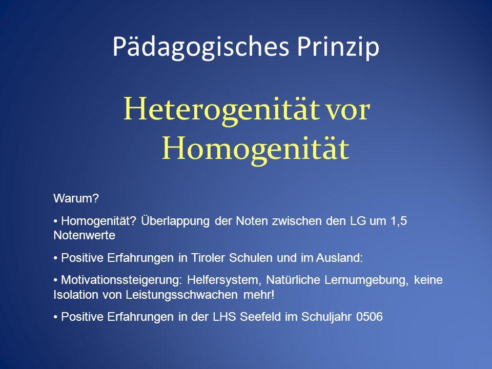 Pädagogisches Prinzip Heterogenität vor Homogenität Warum.