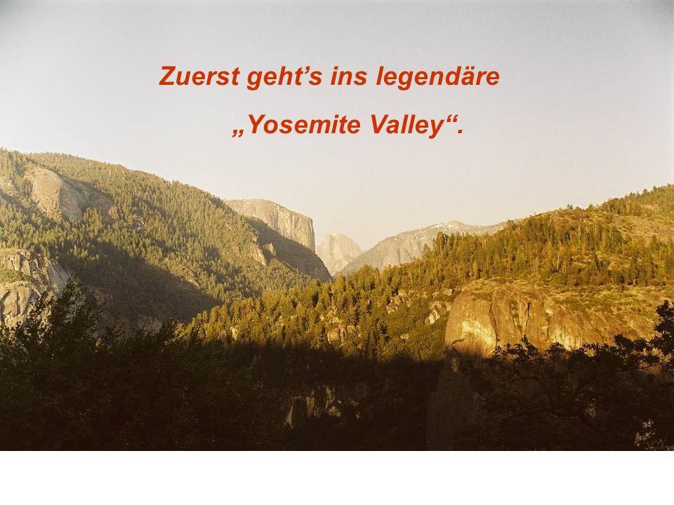 Zuerst gehts ins legendäre Yosemite Valley.