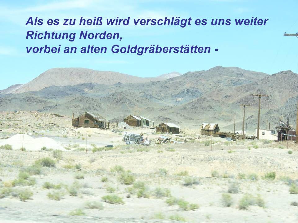 Als es zu heiß wird verschlägt es uns weiter Richtung Norden, vorbei an alten Goldgräberstätten -
