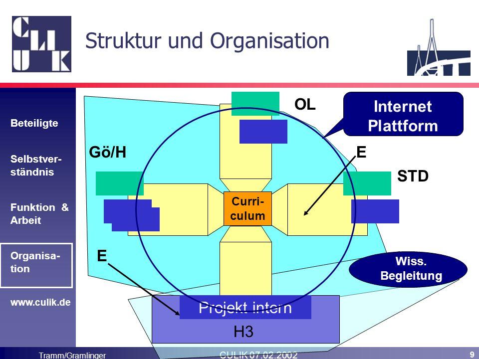 Beteiligte Selbstver- ständnis Funktion & Arbeit Organisa- tion www.culik.de Tramm/Gramlinger CULIK 07.02.2002 9 Struktur und Organisation Curri- culum Projekt intern H3 Wiss.