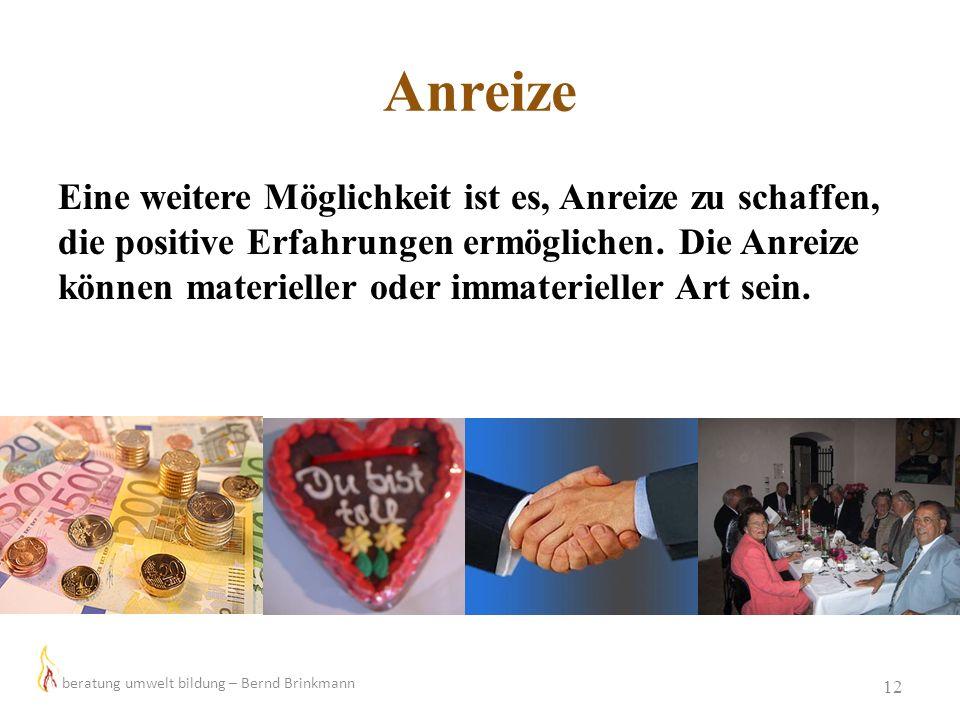 Anreize 12 Eine weitere Möglichkeit ist es, Anreize zu schaffen, die positive Erfahrungen ermöglichen. Die Anreize können materieller oder immateriell