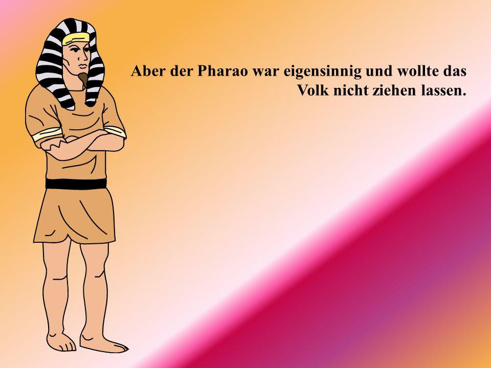 Mosche sah, dass sein Volk in Ägypten sehr viel leiden musste. Er wandte sich an den Pharao und bat ihn: Lass mein Volk ziehen!