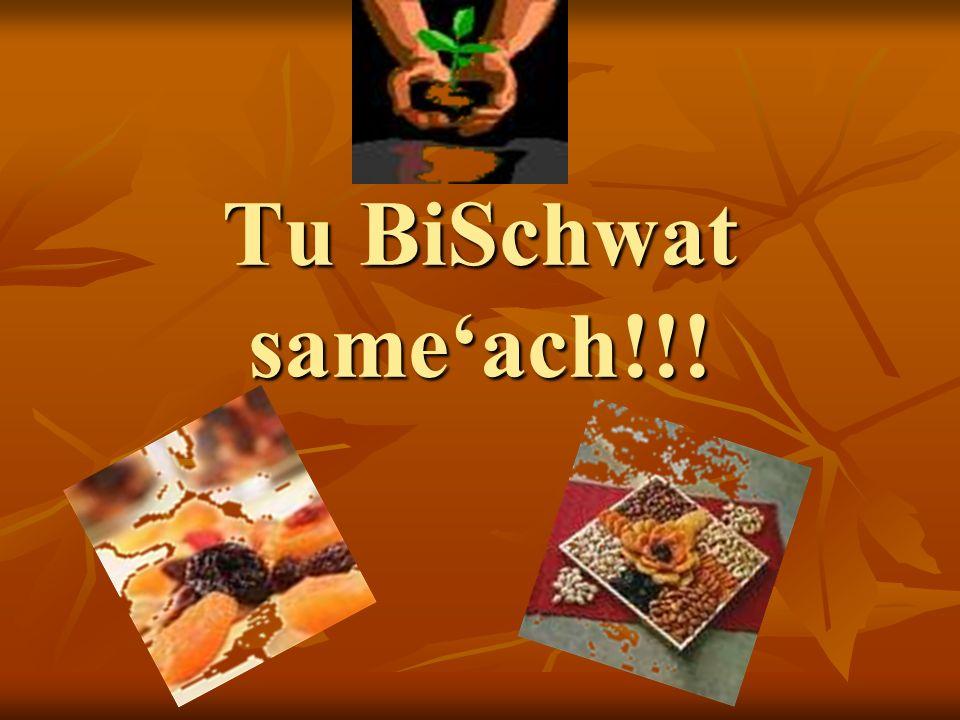 Tu BiSchwat sameach!!!