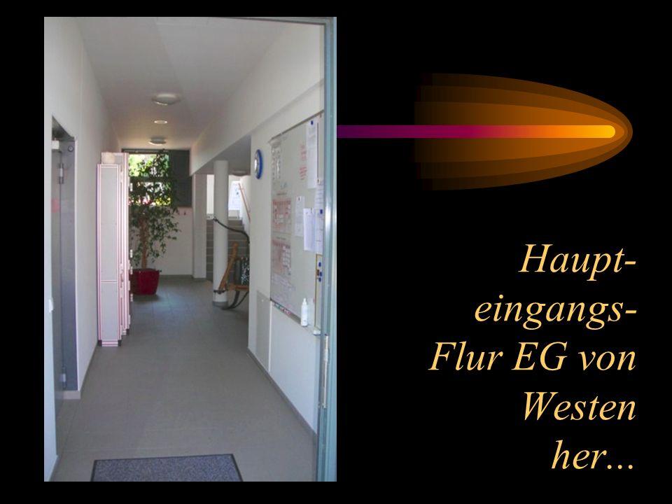 Haupt- eingangs- Flur EG von Westen her...