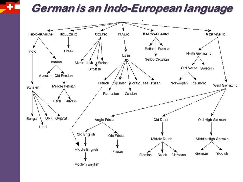 German is an Indo-European language