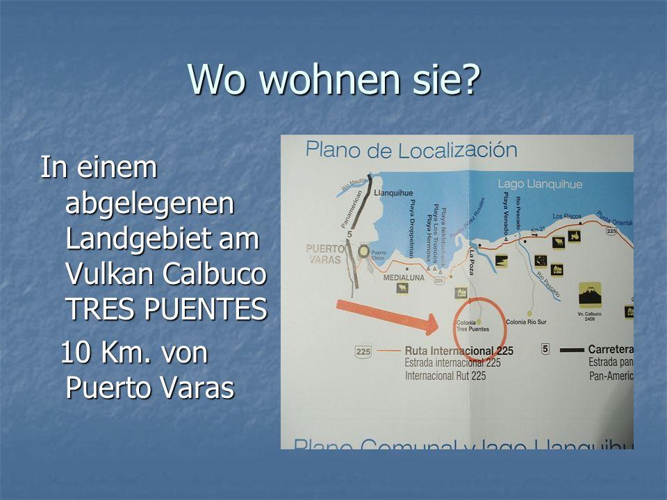 Wo wohnen sie. In einem abgelegenen Landgebiet am Vulkan Calbuco TRES PUENTES 10 Km.