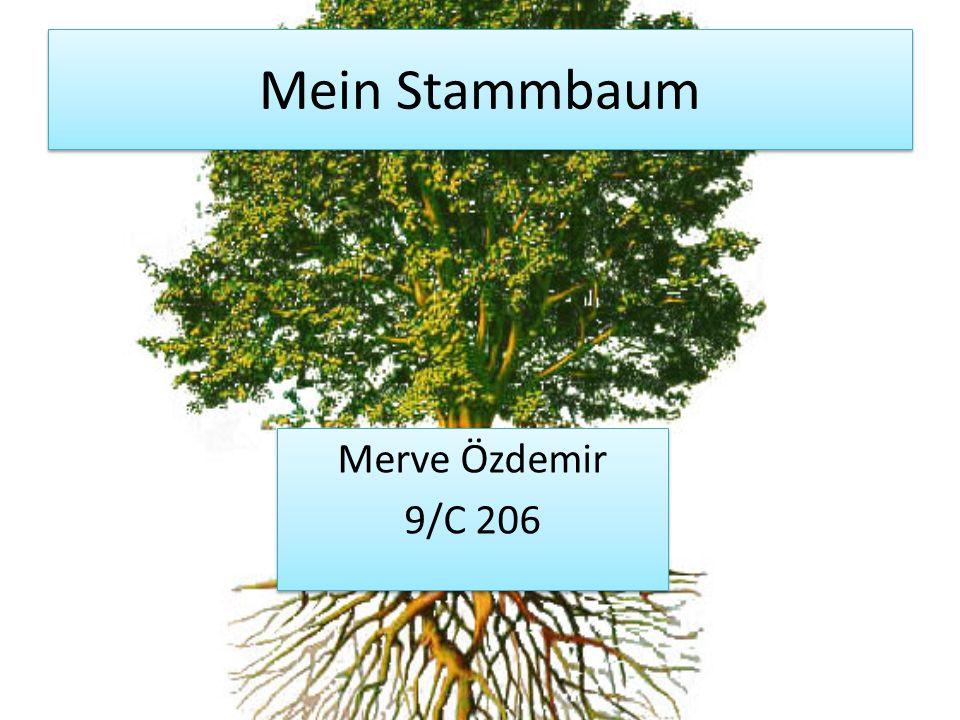 Mein Stammbaum Merve Özdemir 9/C 206 Merve Özdemir 9/C 206