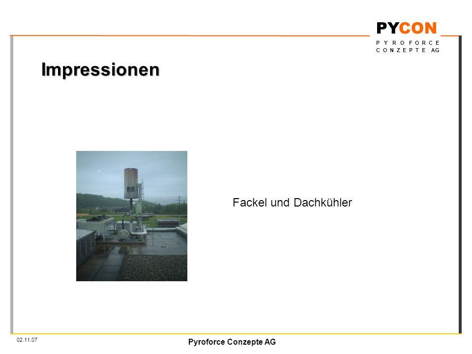 Pyroforce Conzepte AG PYCON P Y R O F O R C E C O N Z E P T E AG 02.11.07 Impressionen Fackel und Dachkühler