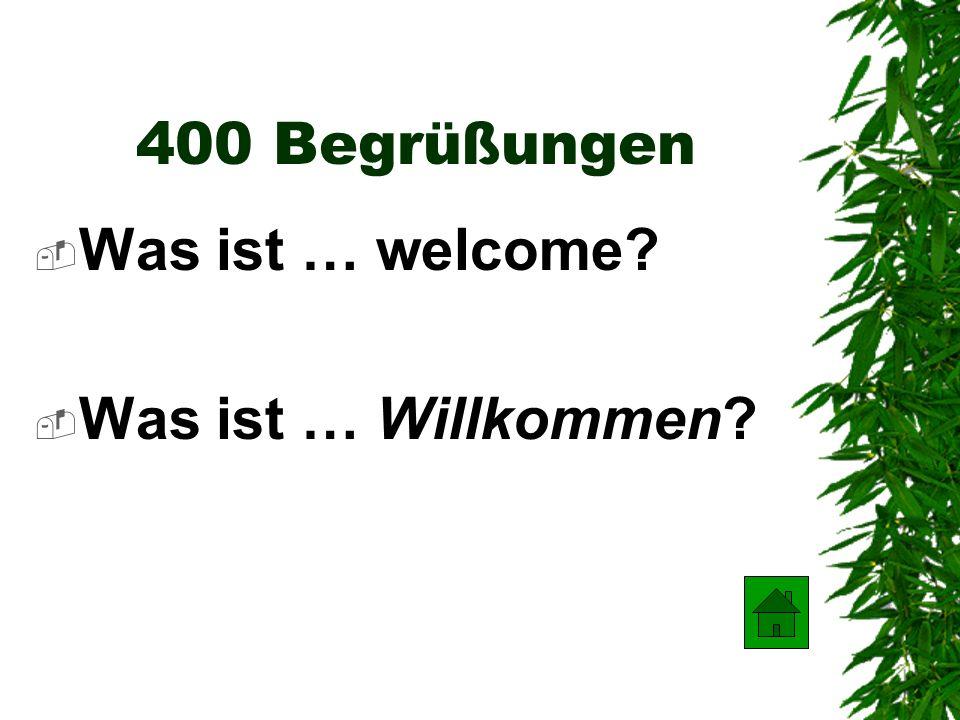 300 Begrüßungen Was ist… good morning? Was ist … Guten Morgen?
