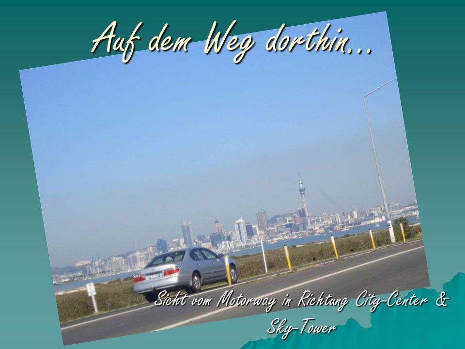 Sicht vom Motorway in Richtung City-Center & Sky-Tower Auf dem Weg dorthin…