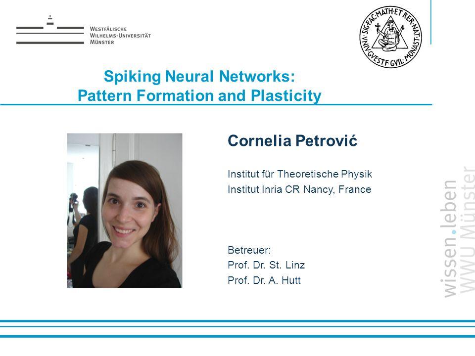 Name: der Referentin / des Referenten Spiking Neural Networks: Pattern Formation and Plasticity Cornelia Petrović Institut für Theoretische Physik Ins